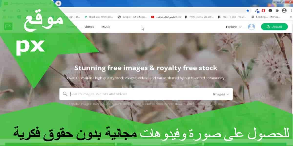 موقع تحميل الصور والفيديوهات بدون حقوق ملكية مجانا